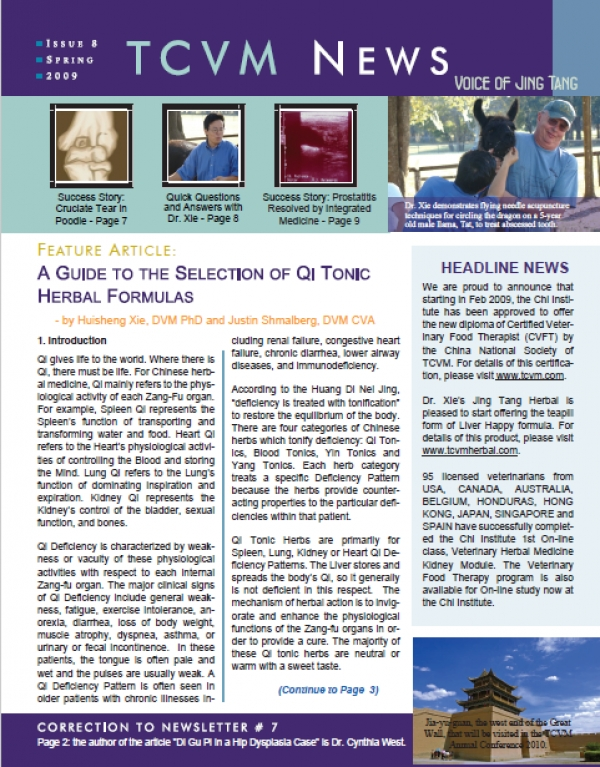 Issue 8, Spring 2009